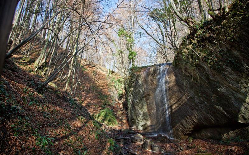 Park prirode Medvednica